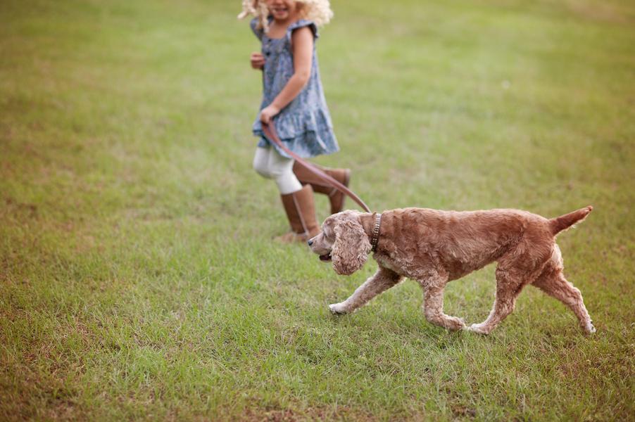 © Hamilton Creek Photography,   Daily Dog Tag   Girl and her dog