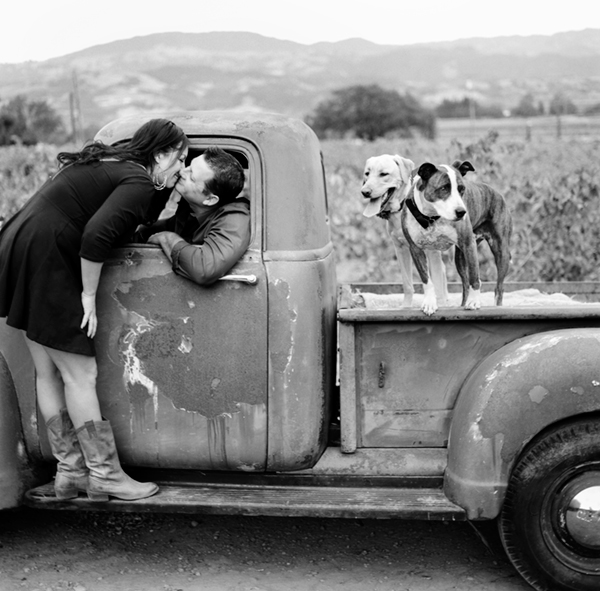 © Photo Lab Pet Photography, Love, dogs and a Chevy