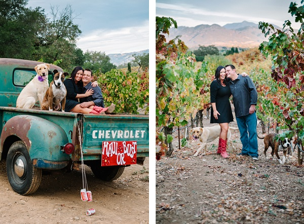 © Photo Lab Pet Photography, Northern-California-Engagement-with-dogs