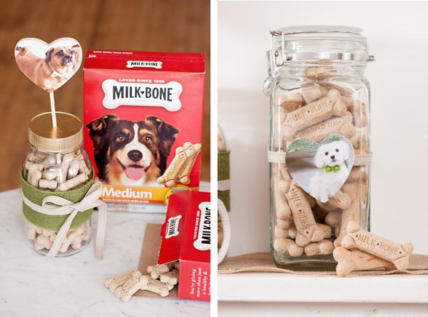 © Alice G Patterson Photography, | Daily Dog Tag | DIY Milkbone Valentines