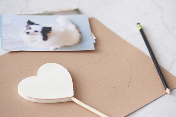 © Alice G Patterson Photography| Daily Dog Tag | DIY Milkbone Valentines