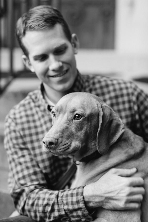© Allison Mannella Photography   Daily Dog Tag   Man's Best Friend, Lab-mix