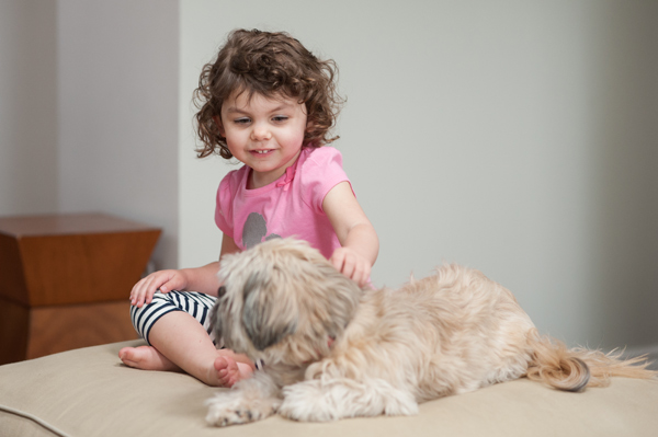 © Alice G Patterson Photography | Daily Dog Tag | DIY-Dog-themed-t-shirt-for-kids