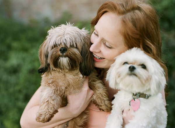 © Loblee Photography    Daily Dog Tag   Shih-Tzu-Yorkie-mix and Maltese