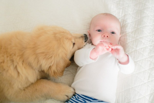 © Melissa Arlena Pet Photography | Daily Dog Tag | 3 month-old-puppy-and-baby
