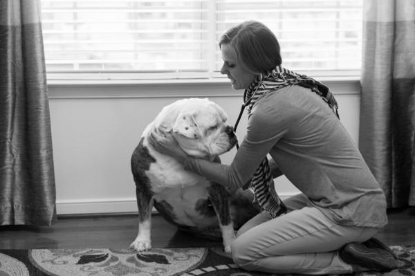 © Elizabeth Henson Photos  | Daily Dog Tag | Vet-making house-call-English-Bulldog