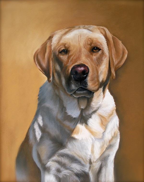 © Imagine Art by Jenna Wilkes   Daily Dog Tag   beautiful-dog-pastels