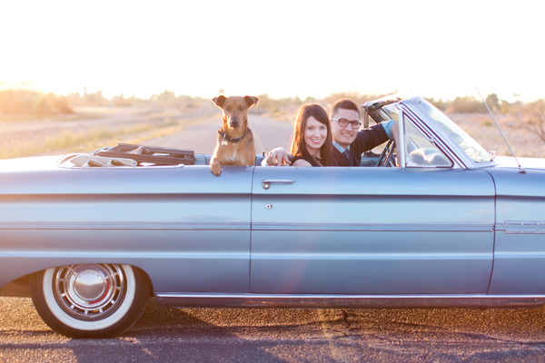© Melissa Jill Photography | Daily Dog Tag | Mixed-breed-in-backseat-blue-classic-convertible