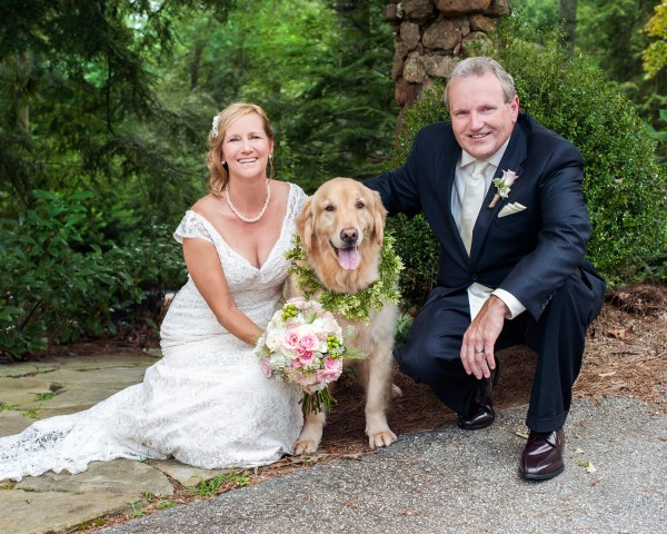 © Cariad Photography/Laura Parente | Daily Dog Tag | Dog in Wedding