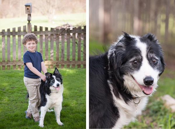 © Alice G Patterson Photography | Daily Dog Tag | Syracuse-Family-and-Pet-Photographer, boy and his dog