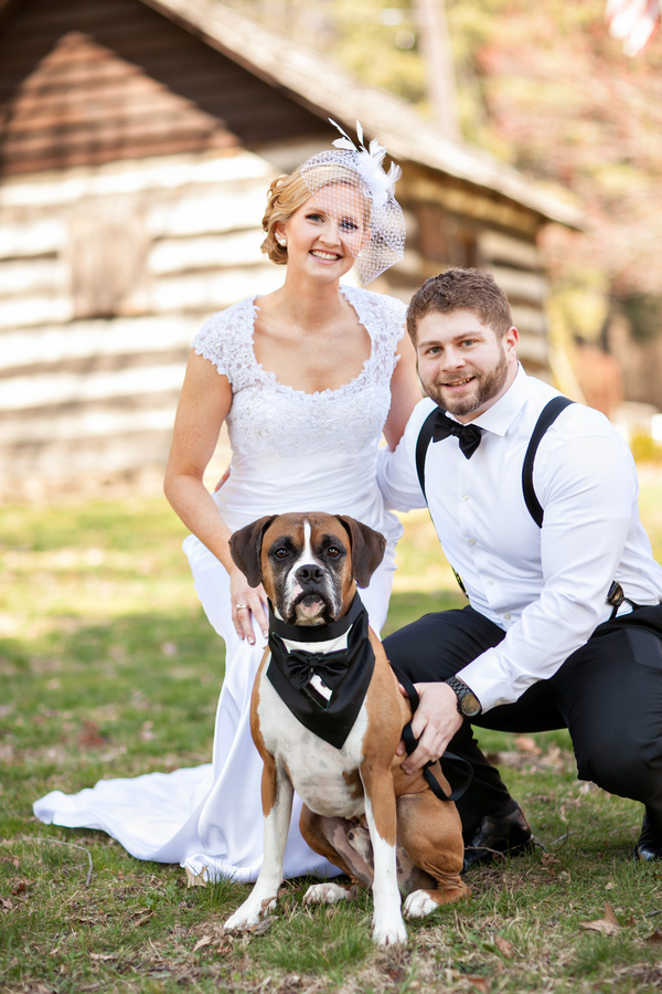 © Custom Portraits by Charlene | Daily Dog Tag |  Newlyweds and Boxer