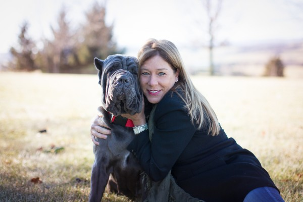 © Gayle Driver Photography | Daily Dog Tag | Neapolitan Mastiff