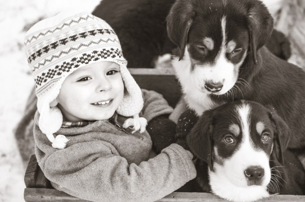© Custom by Nicole Photography | Daily Dog Tag | Toddler-and-puppies