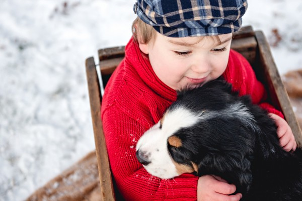 © Custom by Nicole Photography | Daily Dog Tag | Swiss-Mountain-Dog-puppy-and-toddler