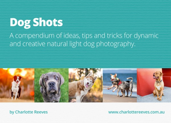 Giveaway:  Dog Shots by Charlotte Reeves