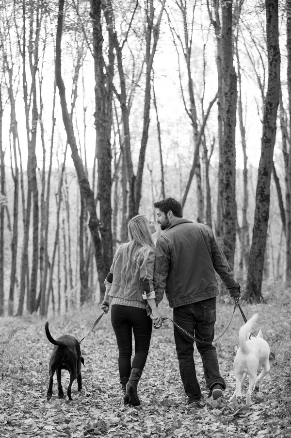 © Julia Jane Studios | Daily Dog Tag | Fall engagement pictures in the woods, how to include dogs in engagement photos