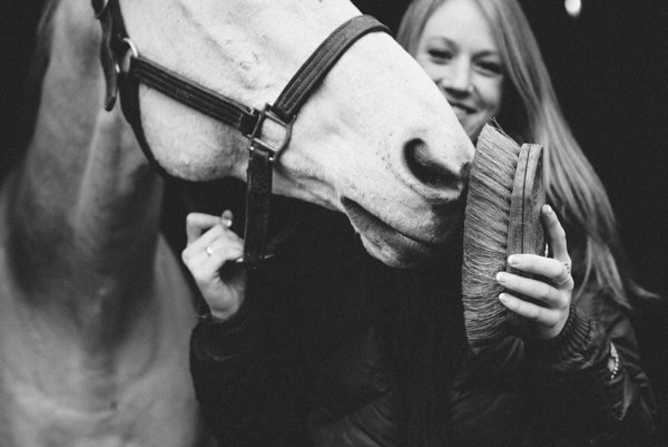© Kirstie Marie Photography   Daily Dog Tag   Digital-and-Film-Pet-Photographer, equine photography