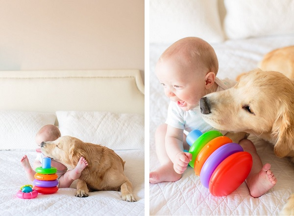 © Melissa Arlena Pet Photography | Daily Dog Tag |best-buddies, puppy-baby