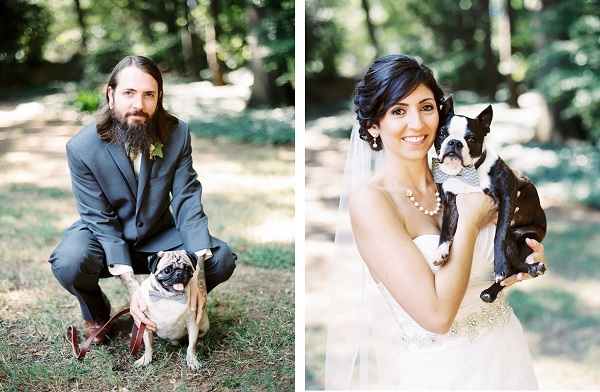 © Sarah Der Photography | Daily Dog Tag | Groom, bride-and-their-dogs