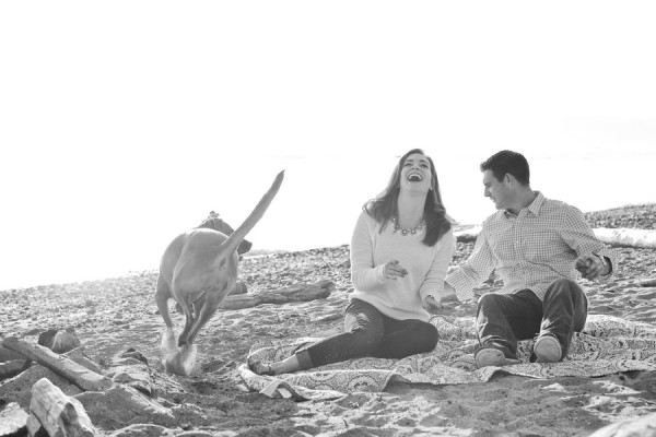 Braa© Barnwood + Brick | Daily Dog Tag | Rhodesian-Ridgeback running-at-beach