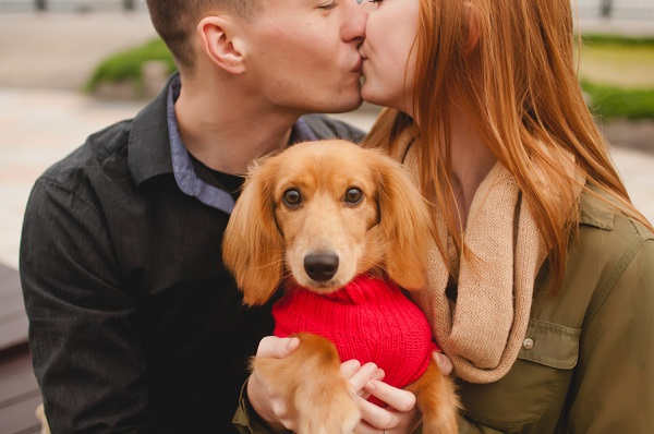 © Oeil Photography | engagement photo with Doxie