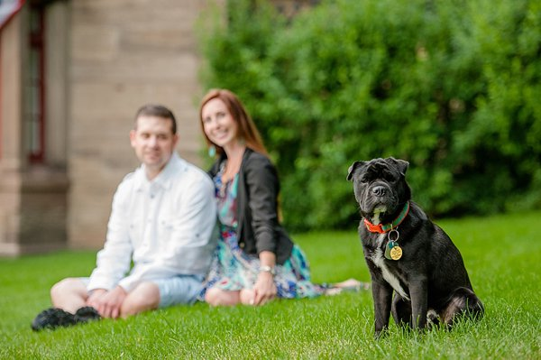© Jenny Karlsson Photography | Daily Dog Tag | handsome-therapy-dog and engaged couple