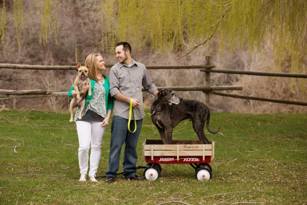 © Brandon Burk Photography   Daily Dog Tag   on-location-engagement-photos-with-Great-Dane-in-wagon, French-Bulldog