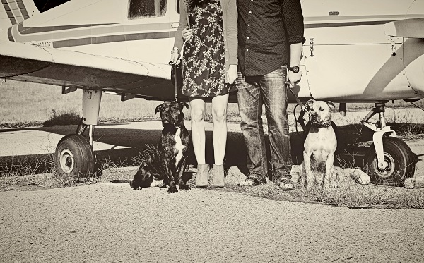 © Jessica Cobb Photography | Daily Dog Tag |family-portrait-with-dogs-and-plane