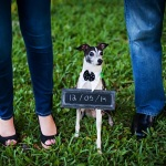 save-the-date-sign, Italian-Greyhound