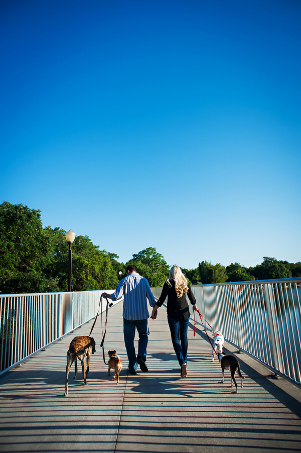 © Limelight Photography | Orlando-engagement-photos-with-dogs