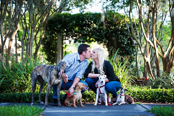 © Limelight Photography | Florida-engagement-photos-with-4-dogs