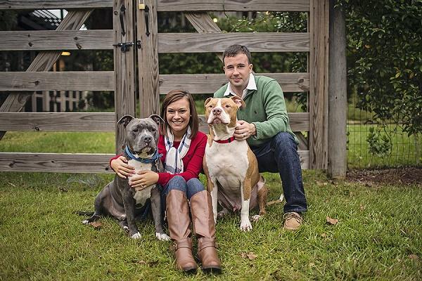 © Amanda Nicole Miller -Photographer   Engagement photos with handsome Pit bulls