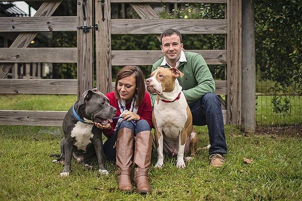 © Amanda Nicole Miller -Photographer | Lifestyle family portraits with couple and Pitties