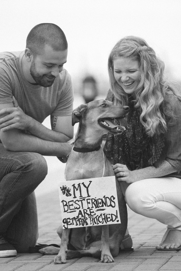 © Beth T Photography | Daily Dog Tag | Dog holding Save-the-Date-sign, engagement photos