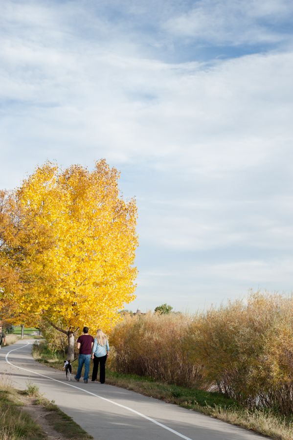 © Denver Paws Photography-engagement-dog-family-sloans-lake-melissa-mullins-media-pets-couple-fall-25