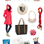 shopping idea for the dog and the people who love him