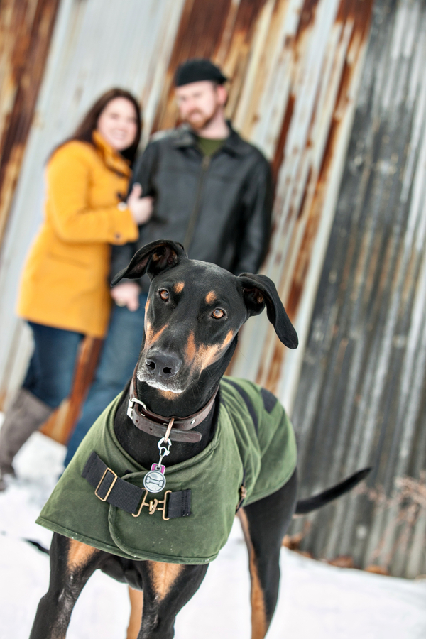 © Custom Portraits by Charlene | Beautiful winter engagement photos of a couple and their dog