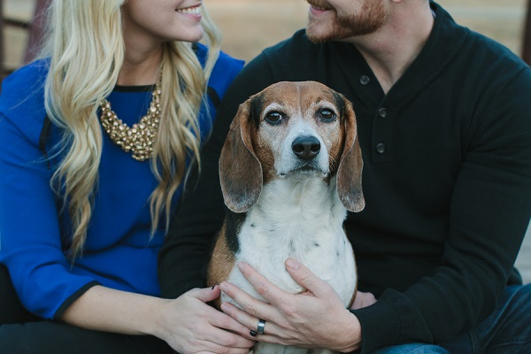 Happy Tails:  Jersey