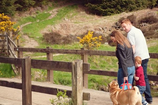 © Catharine Noble Photography | on location family dog photography