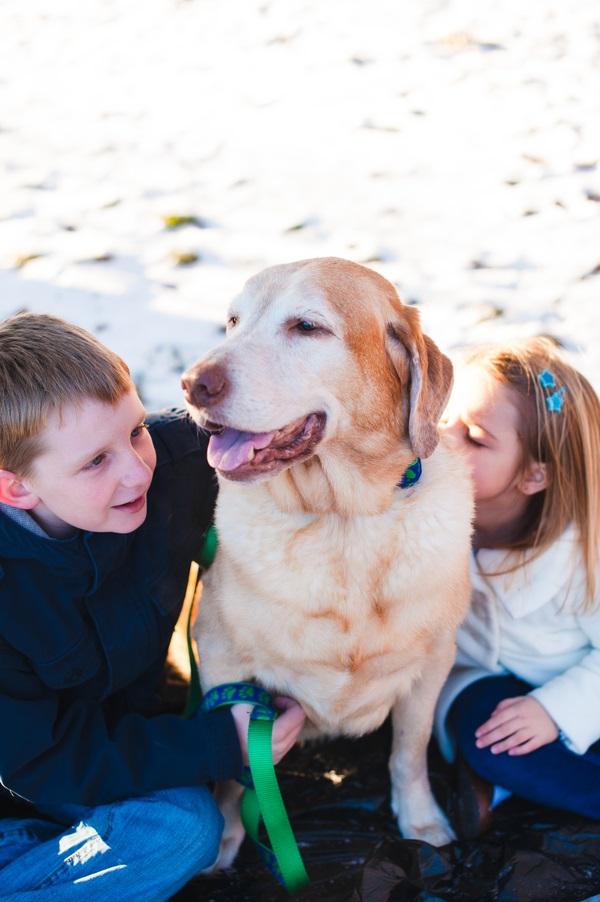 © Laura Matthews Photography | Lifestyle-dog-kids-photography