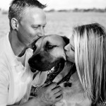 engagement photos with South African Mastiff