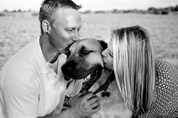 © Maggie Z Photo | engagement photo with South African Mastiff