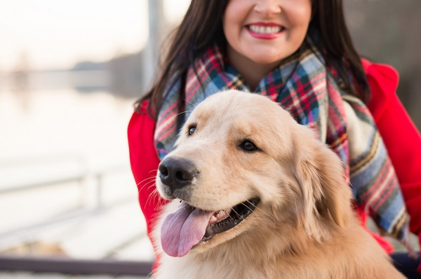 © Elizabeth Henson Photos   Golden Retriever lifestyle photography, Handsome dog