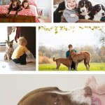 Best Supporting Dog-2015 Nominees, dogs,best friends, support, companion, loyal friend