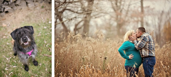 © April Ziegler Photography | gorgeous maternity session with dog, on-location-dog-family-portraits