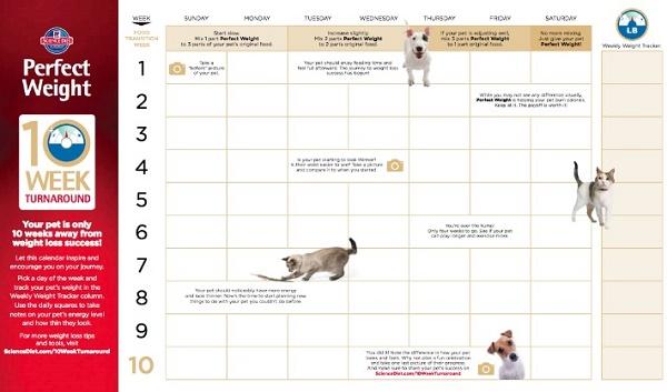 Hills-10-Week-Turn-Around-Calendar #Perfectweight