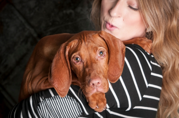 © J Catherine Photography | studio-pet-photography, Vizsla-puppy-velcro-dog,