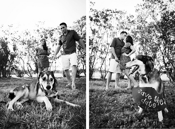 © Limelight Photography | Save-the-Date-photos-with-dog, lifestyle-pet-photography,
