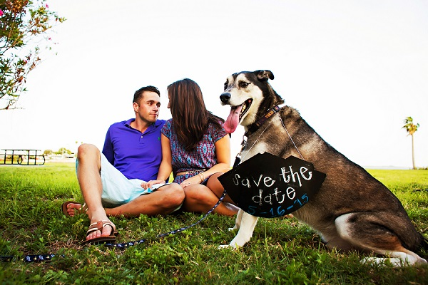 © Limelight Photography | dog-wearing-Save-the-Date-sign