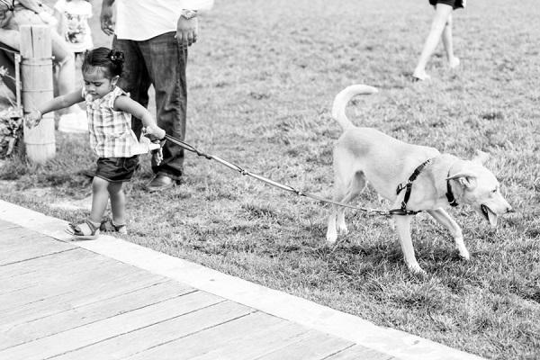 © Priyanca Rao Photography   Brooklyn-family-dog-photography, rescue dog